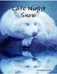 Late Night Snow - Niousha Ezati