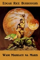 Wani Marigayi na Mars - Edgar Rice Burroughs