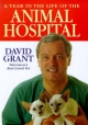 Year in the Life of the Animal Hospital
