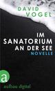 Im Sanatorium / An der See - David Vogel