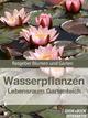 Wasserpflanzen - Lebensraum Gartenteich