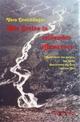 Wie Steine in reissenden Gewässern - Vera Dreichlinger