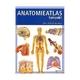 Anatomieatlas kompakt