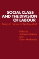 Social Class & Divisn Labo