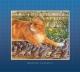 The Church Mice Adrift - Graham Oakley