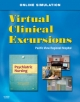 Virtual Clinical Excursions 3.0 for Psychiatric Nursing
