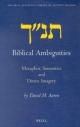 Biblical Ambiguities - David H. Aaron