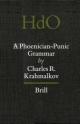 An Introductory Grammar of Rabbinic Hebrew - Miguel Perez Fernandez; Miguel Perez Fernandez