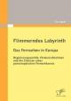 Flimmerndes Labyrinth: Das Fernsehen in Europa  – Regulierungspolitik, Fördermaßnahmen und die Chancen eines paneuropäischen Fernsehkanals - Eva Ingold