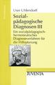 Sozialpädagogische Diagnosen III - Uwe Uhlendorff