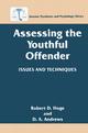 Assessing the Youthful Offender - Robert D. Hoge; D. A. Andrews