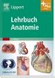Lehrbuch Anatomie