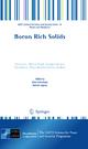 Boron Rich Solids - Nina Orlovskaya; Mykola Lugovy