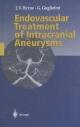 Endovascular Treatment of Intracranial Aneurysms