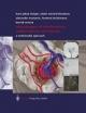 Neurosurgery of Arteriovenous Malformations and Fistulas