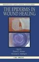 Epidermis in Wound Healing