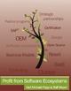 Profit from Software Ecosystems - Karl Popp; Ralf Meyer