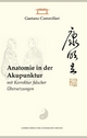 Anatomie in der Akupunktur mit Korrektur falscher Übersetzungen