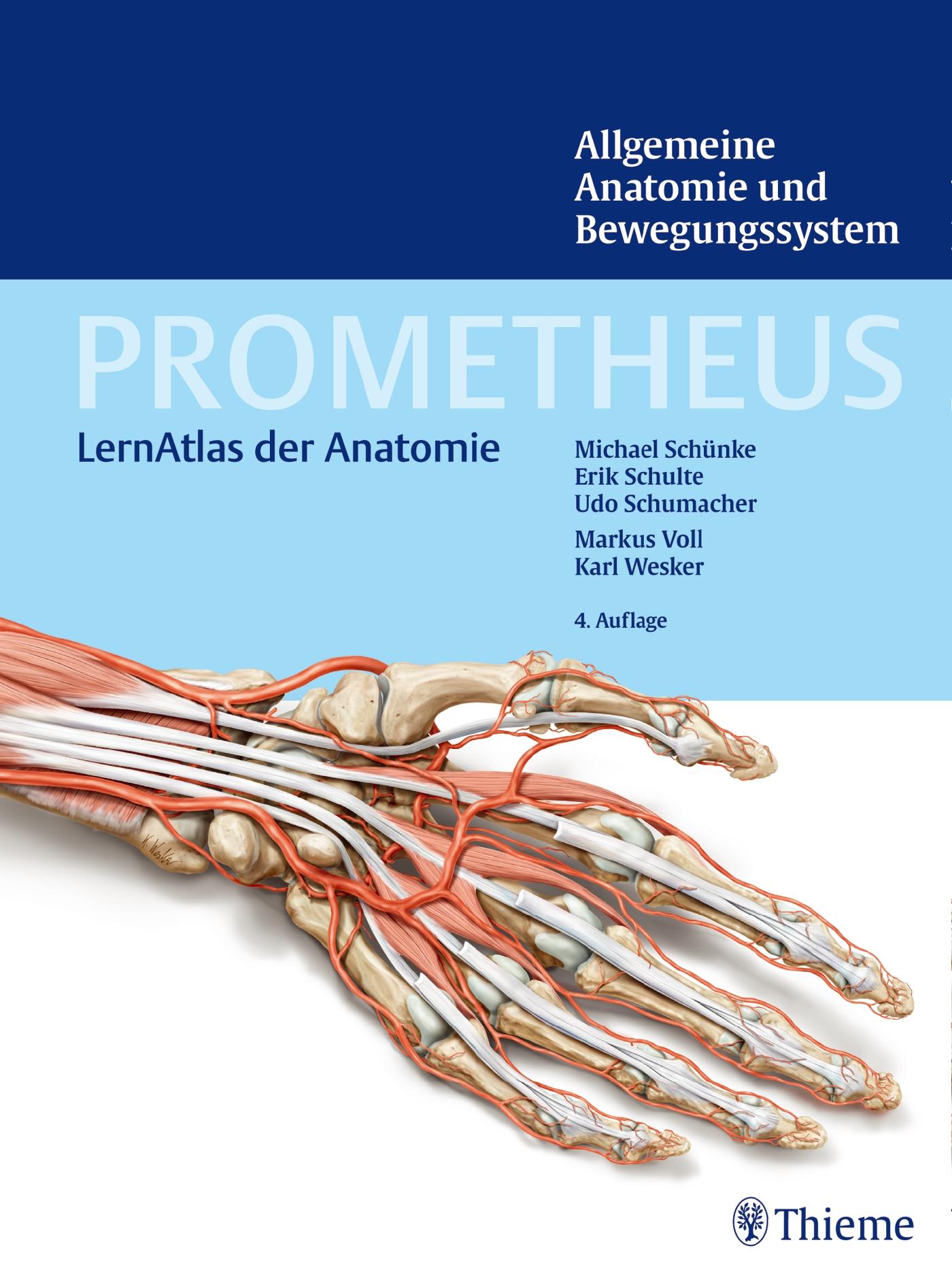 Kreuzmich Essen - Lernportal der Fachschaft Humanmedizin Essen