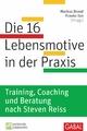 Die 16 Lebensmotive in der Praxis - Frauke Ion;  Markus Brand