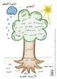 Lernbaum (arabisch) - Silke Schönrade