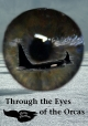 Through the Eyes of the Orcas - Doris Thomas