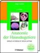 Anatomie der Haussäugetiere - Horst E König; Hans G Liebich