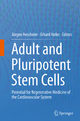 Adult and Pluripotent Stem Cells