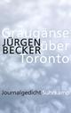 Graugänse über Toronto - Jürgen Becker