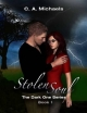 Stolen Soul: (&quote;The Dark One Series - Book 1&quote;) - C.A. Michaels