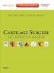 Cartilage Surgery