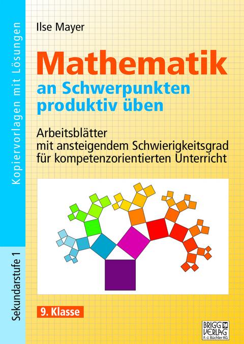 Mathematik an Schwerpunkten produktiv üben - 9. Klasse von Ilse ...