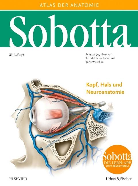 Der neue Sobotta: Band 3, Kopf, Hals und Neuroanatomie - jetzt ...