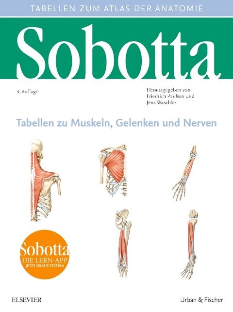 Sobotta Tabellen zu Muskeln, Gelenken und Nerven von Friedrich ...