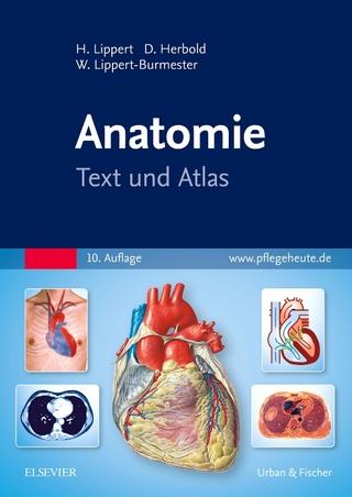 Übungsbuch Anatomie und Physiologie für Dummies von Janet Rae-Dupree ...