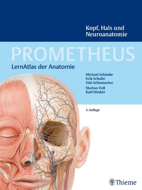 PROMETHEUS Kopf, Hals und Neuroanatomie von Michael Schünke | ISBN ...