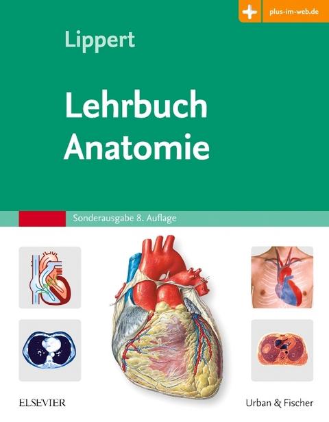 Lehrbuch Anatomie von Herbert Lippert | ISBN 978-3-437-42363-5 ...