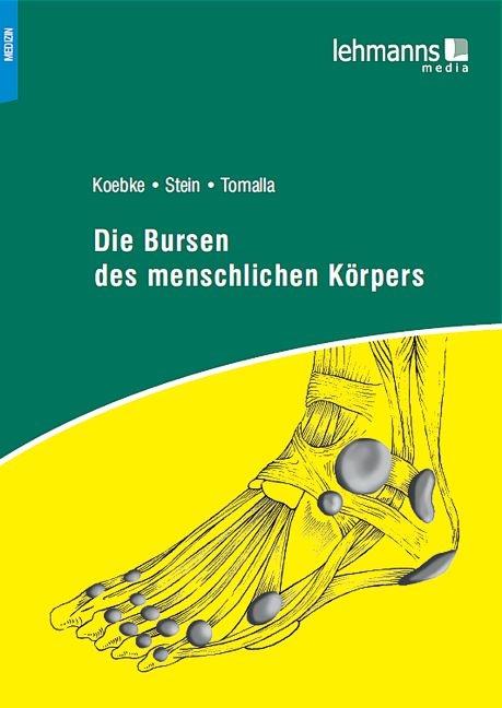 Die Bursen des menschlichen Körpers von Gregor Stein | ISBN 978-3 ...