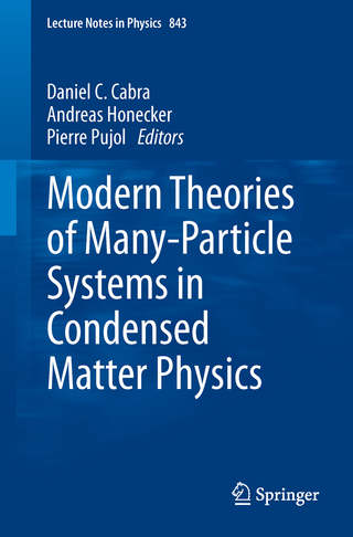 Modern Theories of Many-Particle Systems in Condensed Matter Physics - Daniel C. Cabra; Andreas Honecker; Pierre Pujol