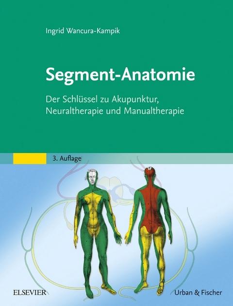 Segment-Anatomie von Ingrid Wancura-Kampik | ISBN 978-3-437-57972-1 ...