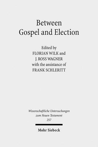 Between Gospel and Election - Frank Schleritt; J. Ross Wagner; Florian Wilk