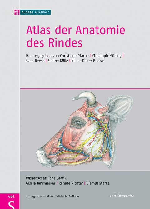 Atlas der Anatomie des Rindes von Christiane Pfarrer | ISBN 978-3 ...