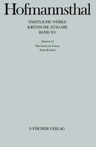 Dramen 13 - Hugo von Hofmannsthal; Christoph Michel; Michael Müller