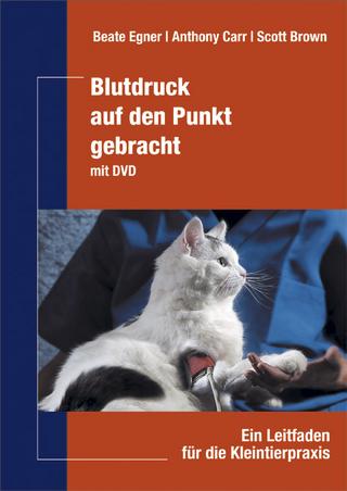 Praxisbuch Zahnmedizin beim Heimtier von Stefan Gabriel   ISBN 978-3 ...