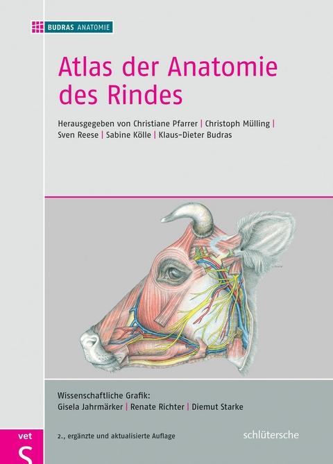 eBook: Atlas der Anatomie des Rindes von Prof. Dr. Christiane ...