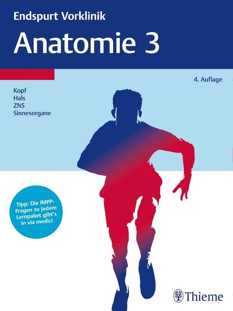 eBook: Endspurt Vorklinik: Anatomie 3 | ISBN 978-3-13-241007-7 ...