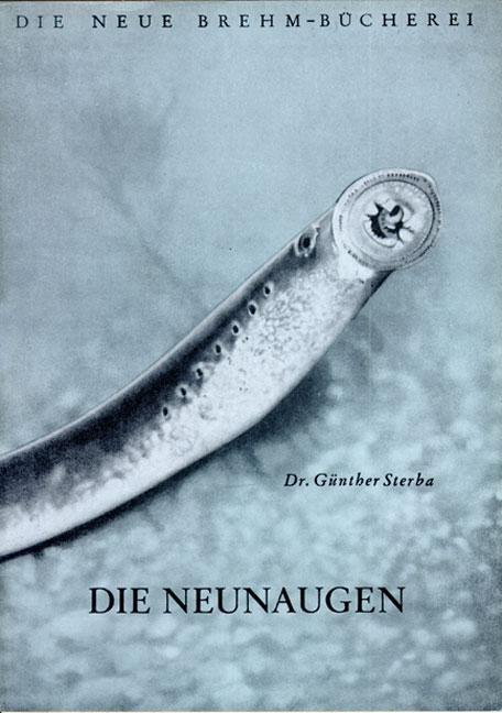 Die Neunaugen von Günther Sterba | ISBN 978-3-89432-560-2 | Fachbuch ...