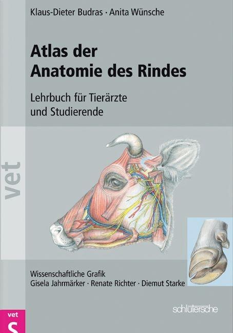 Atlas der Anatomie des Rindes von Klaus D Budras | ISBN 978-3-89993 ...