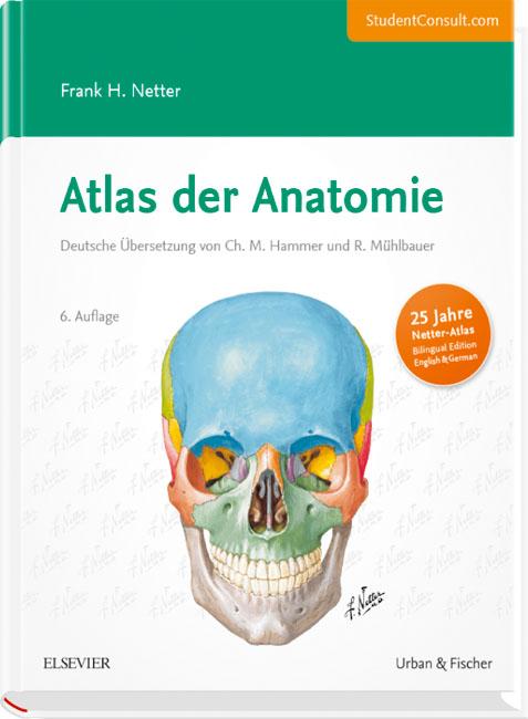 Atlas der Anatomie von Frank H. Netter | ISBN 978-3-437-41605-7 ...