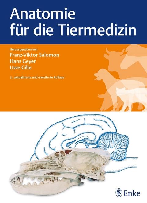 Anatomie für die Tiermedizin von Franz-Viktor Salomon | ISBN 978-3 ...